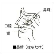 Hanatake