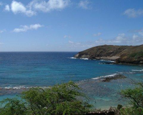 Hawaiisea_2