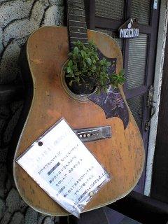 Guitarpot