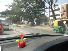 Roadbanglr2