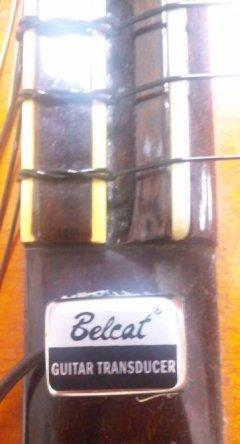 Belcat_2