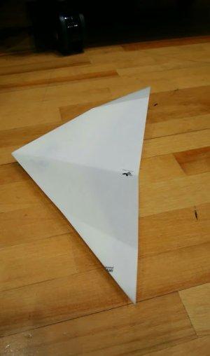 Delta301