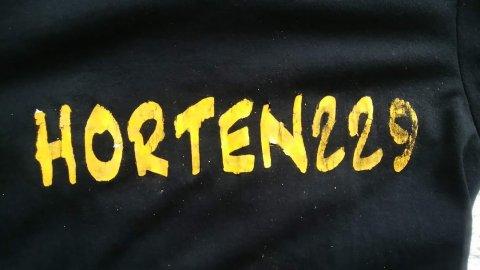 Horten2292