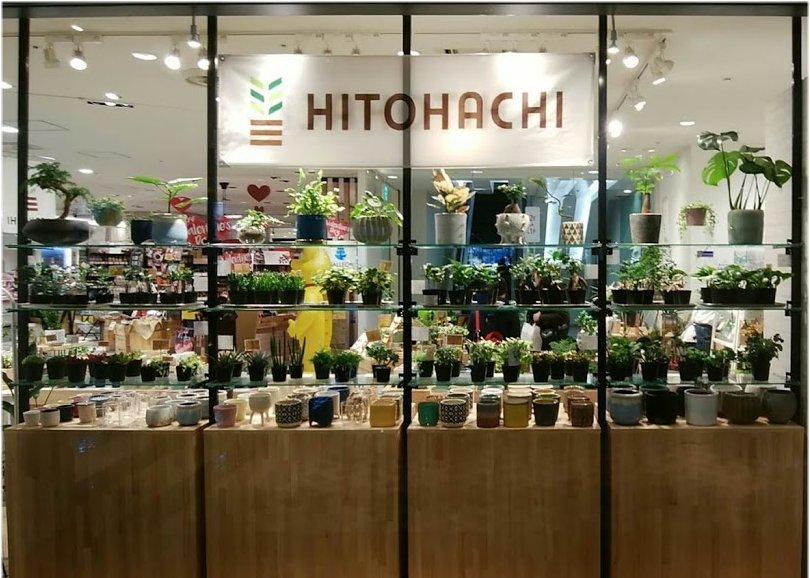 Hitohachi