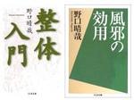 Noguchi20050116